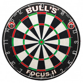 Board Focus II tournament darts